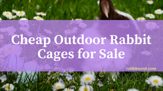 cheap outdoor rabbit cages for sale