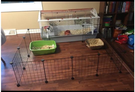 Cheap rabbit cage playpen.