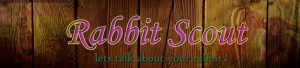 rabbitscout.com