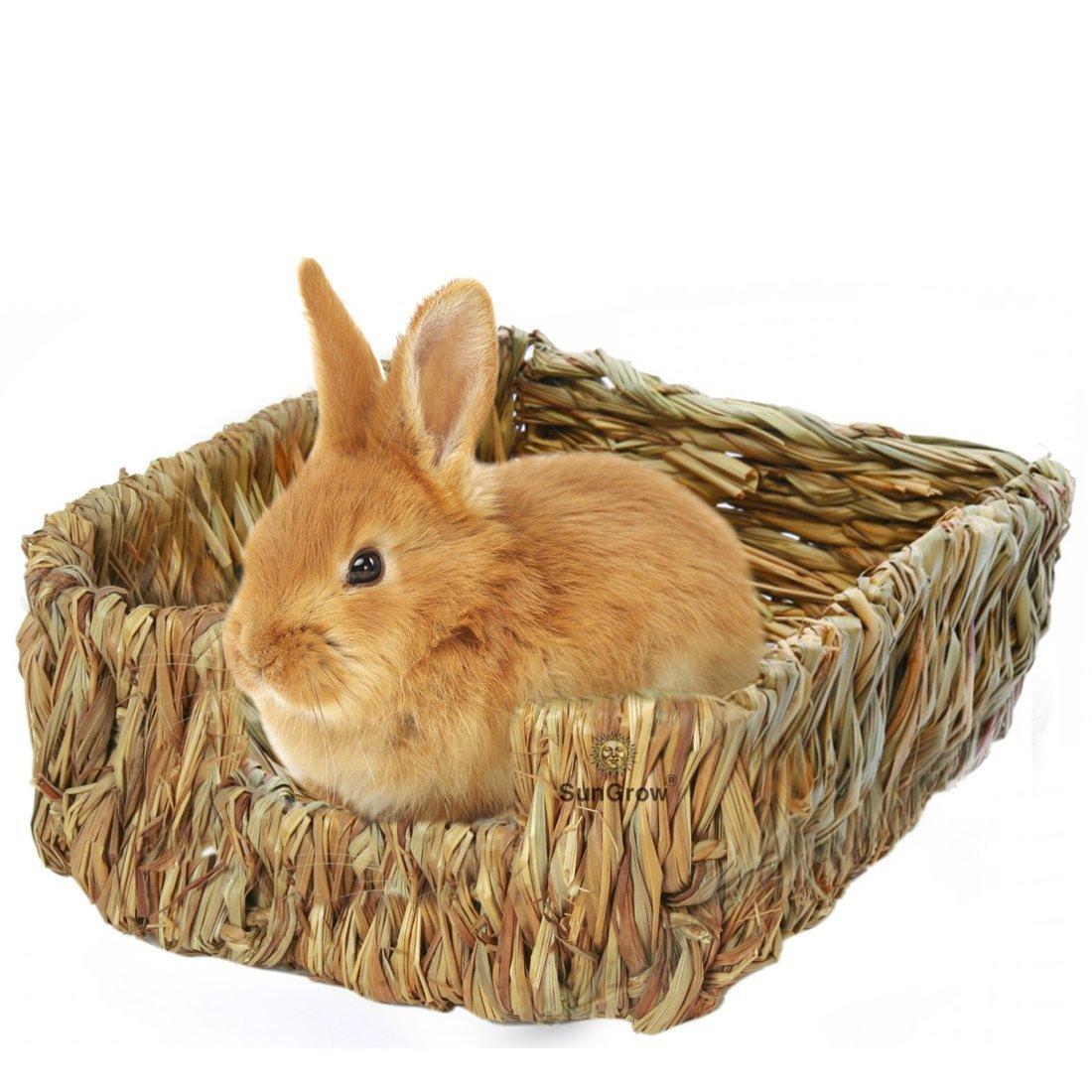 Rabbit bed